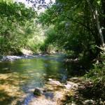 priroda-ribnica